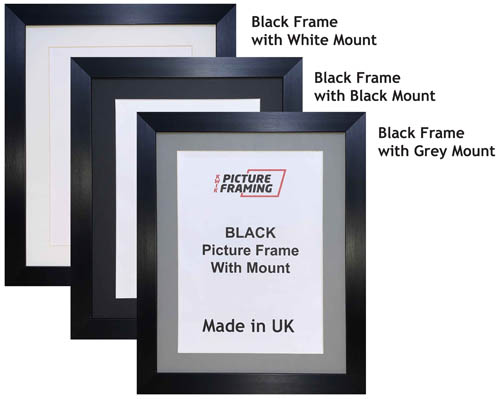 Black Picture Frame with Mount