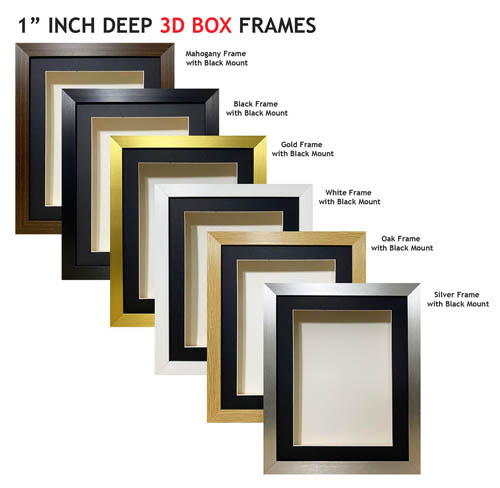 1 inch Deep Shadow 3D Box Picture Frame - Black Mount