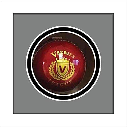 Cricket Ball Display Case for Signed Cricket Ball | Cricket Memorabilia