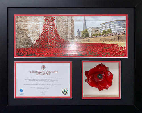 Ceramic Poppy 3D Box Frame with 2 opening for certificate and photo