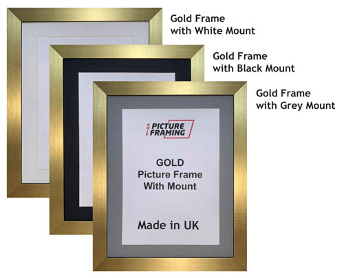 Gold Picture Frame with Mount