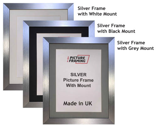 Silver Picture Frame with Mount