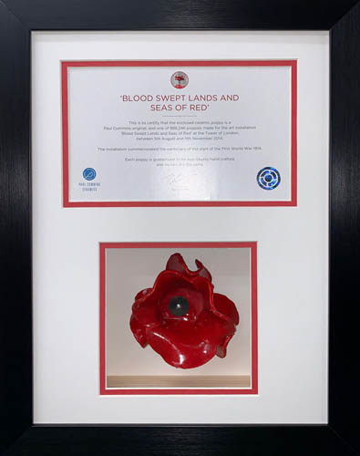 One Poppy 3D Box Frame with A5 opening for certificate