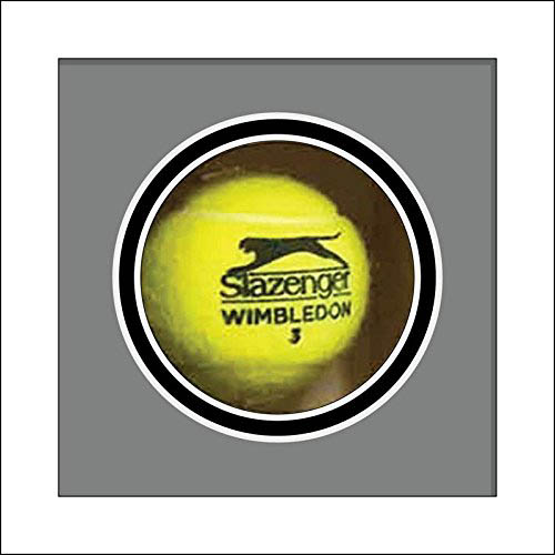 Tennis Memorabilia | Tennis Ball Display Case for Signed Tennis Ball