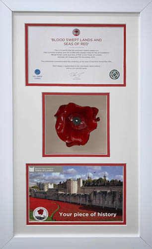 Poppy Display Frame For Tower of London